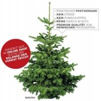 Weihnachtsbäume ab 15 € direkt kostenlos nach Hause geliefert