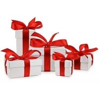 Lieferung vor Weihnachten – Onlineshops & Paketdienste in der Übersicht