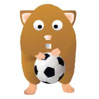 Euro 2016 Manager Gewinnspiel – Hamsterliga mit tollen Preisen!
