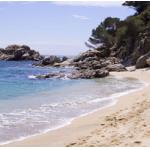 Sommerurlaub 2018 – Angebote & Highlights ab 64 €