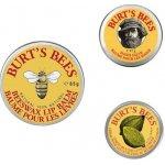 Burt's Bees Dreierbundle Naturkosmetik um 4,29 € statt 22,80 €