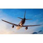 Billige Flüge zu Wahnsinnspreisen bei Urlaubshamster