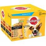 Pedigree Hundenassfutter in Sauce (48 x 100g) um 7,70 € statt 12,36 €