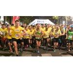 GRATIS Startplatz beim Vienna Night-Run am 24.09. (nur 250 Plätze)