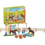 Schleich Pony Agility Training (42481) um 18,90 € statt 22,94 €