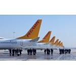 Wien – Dubai – Wien für nur 250 Euro von November bis März bei Pegasus Airlines