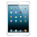 iPad Mini 16GB WiFi in weiß oder schwarz inkl. Versand um nur 314 Euro