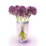 Philips LED Vase Lumiware inkl. Versand um 29,90 Euro bei Brands4Friends