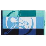 Strandtuch Chiemsee (verschiedene Motive) inkl. Versand um 12,99€